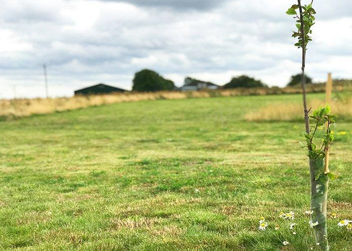 Scenic Camping in Lincolnshire | Camp Site in Lincolnshire